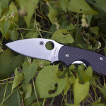Spyderco Sage 1 Carbon Fiber Plain Edge Knife Review