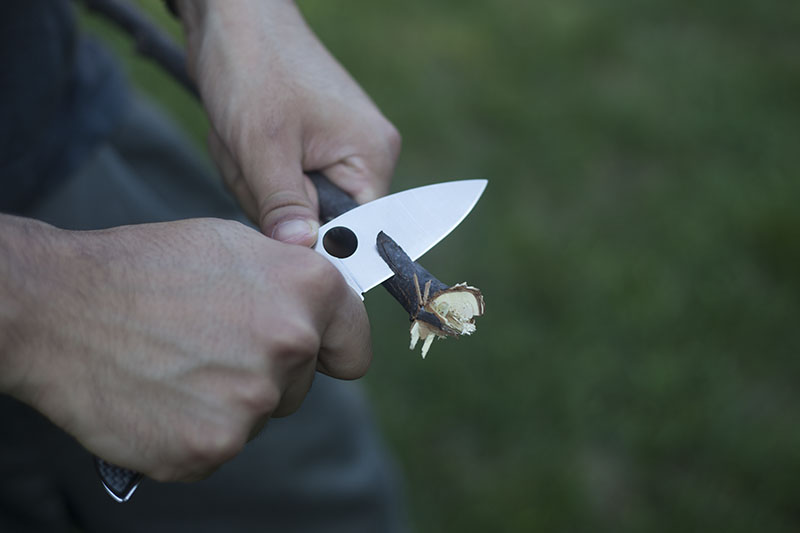 spyderco sage 1 more than just surviving review