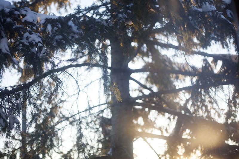 survival hypothermia and hypothermia