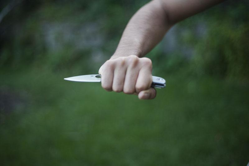 spyderco sage series knife titanium