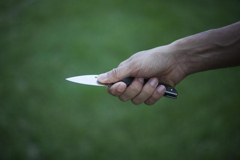 spyderco sage 2 choil knife
