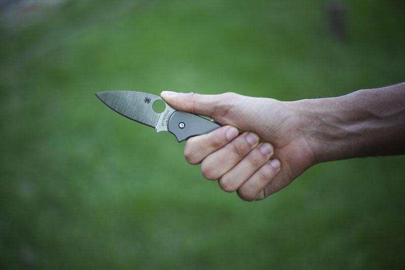 beautiful blade shape spyderco
