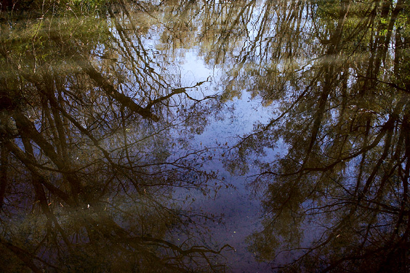 The Many Benefits of Finding Bodies of Water in Survival Situations