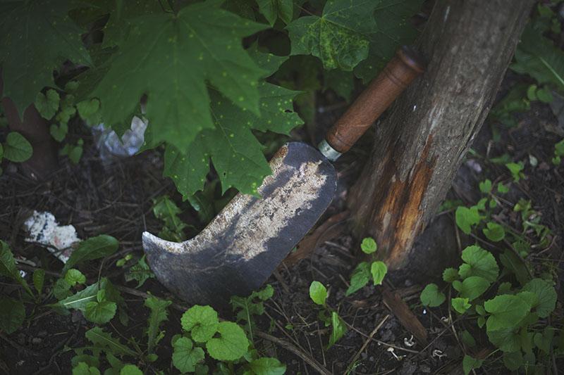 wilderness survival blog article list
