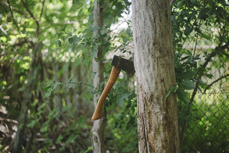 prepper articles wilderness survival blog