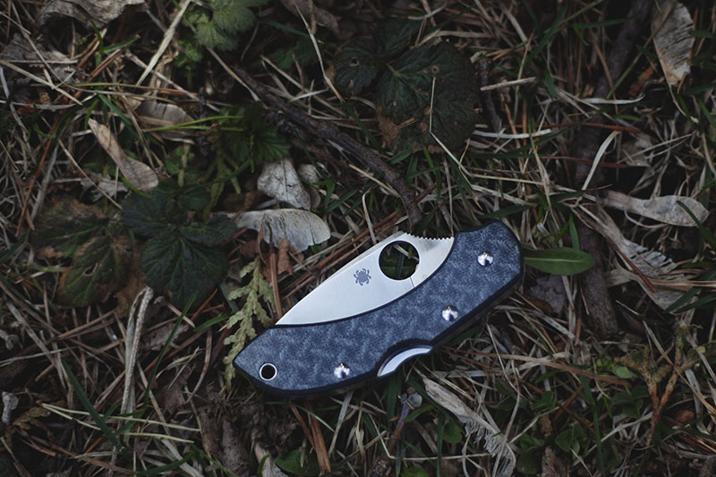 spyderco-dragonfly-2-more-than-just-surviving-edc-knife-review