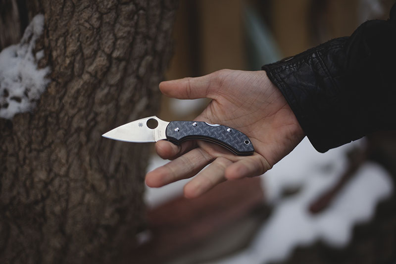 everyday carry small knife review spyderco dragonfly 2