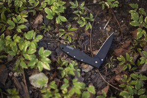 Kershaw Leek 1660 Ken Onion Flipper Knife Review
