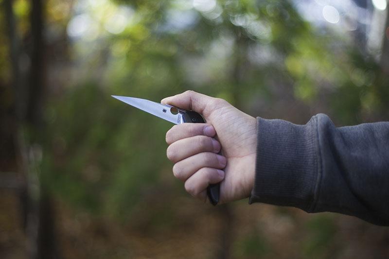 folding edc liner lock pocket knife spyderco des horn review