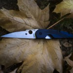 Spyderco Des Horn Lightweight EDC Pocket Knife Review