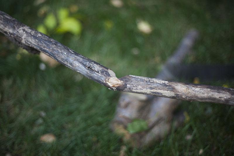 gerber gator survivalist prepper fixed blade outdoor machete knife review