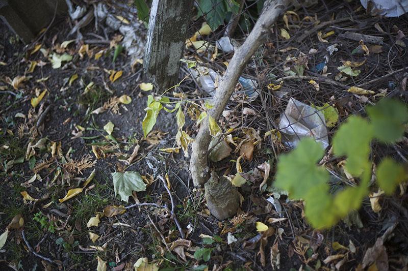 bushcraft folding saw review bahco laplander survivalist blog