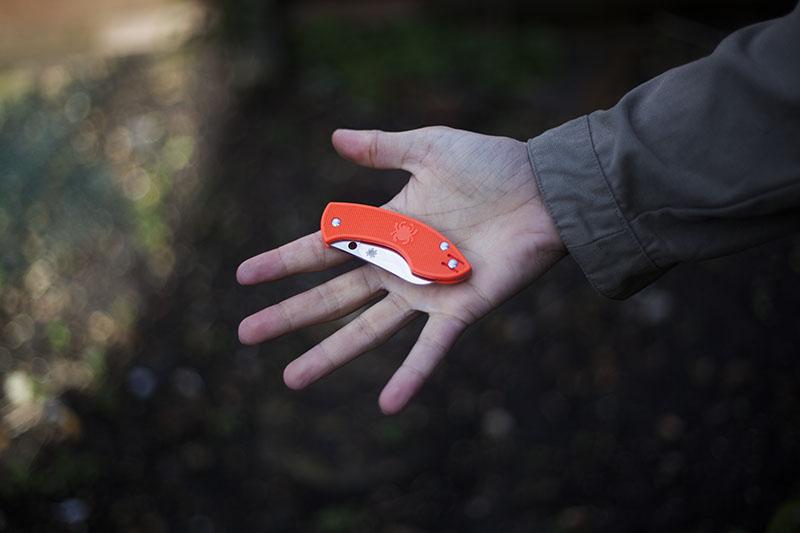 everyday carry folding slip joint blaze orange handle knife pingo