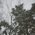 17 Common Sense Ways to Prevent Hypothermia While Outdoors