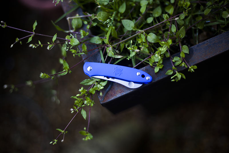 tiny edc everyday carry knife spyderco roadie review