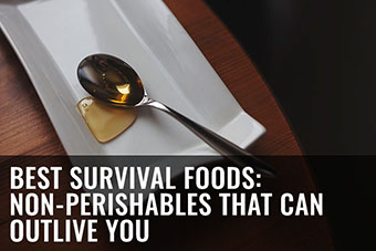 top survival foods to stockpile
