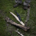 Join Us on Google+ and Share Your Thoughts About Wilderness Survival & Preparedness