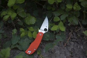 spyderco-urban-edc-knife-review-more-than-just-surviving