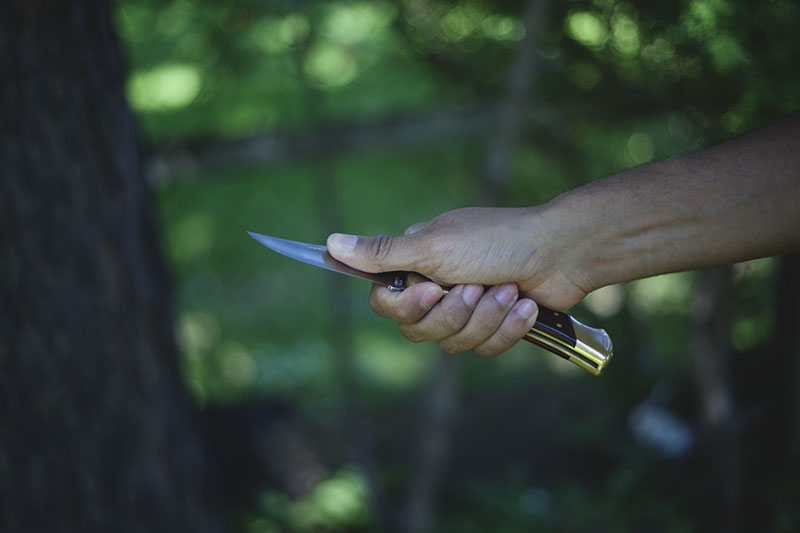 more than just surviving review buck 110 folding hunter