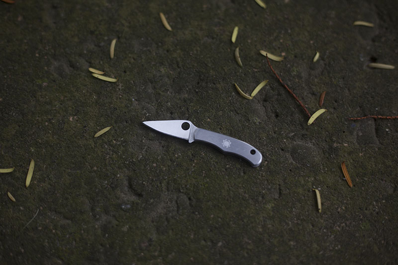 survival blog spyderco bug review tiny edc keychain knife