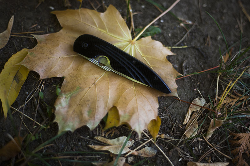 edc pocket knife spyderco des horn review knives gear