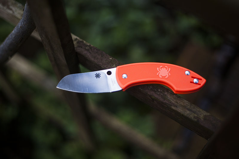 spyderco pingo denmark legal folding edc knife everyday carry