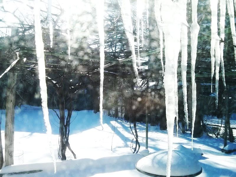 canadian-winter-in-toronto-icicles-backyard