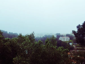 fog-in-portugal-beautiful-view